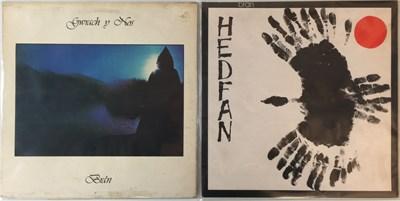 Lot 5-BRAN - HEDFAN & GWRACH Y NOS LPs (ORIGINAL WELSH PRESSINGS - SAIN RECORDS)
